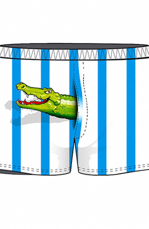 Crocodile boxer